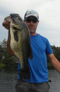 6 pounder black and blue bico